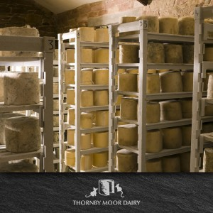 Thornby Moor Dairy-Little-Cheese-making image 4
