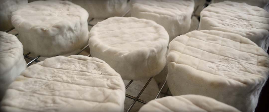 Thornby Moor Dairy - Goats-Milk-Cheese